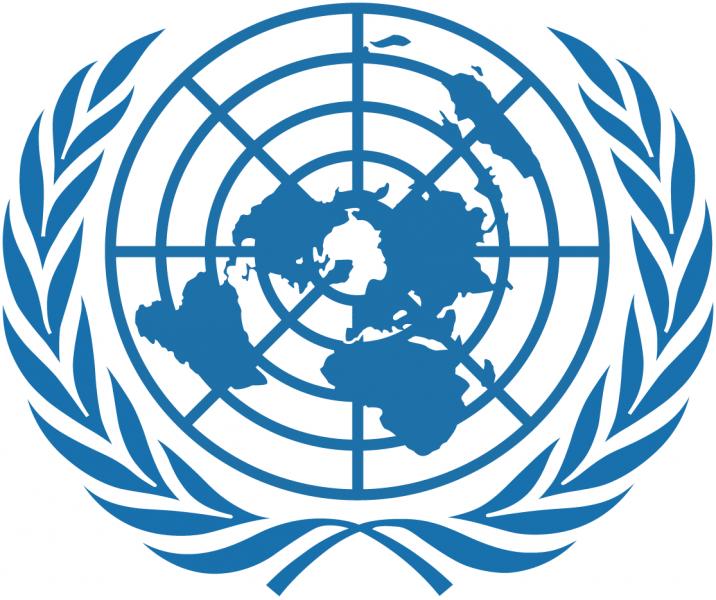 United Nations -UN-Logo